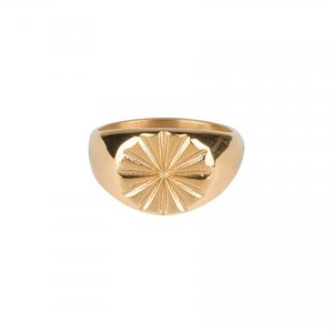 charmins zegelring staal goud met ster