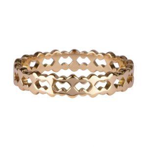 ring dubbel van staal goud
