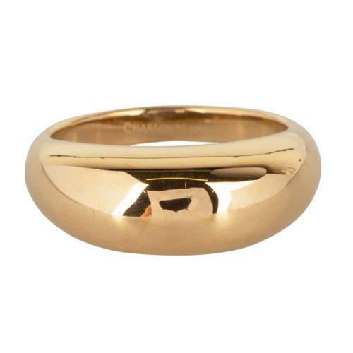 ring dik statement van staal goud