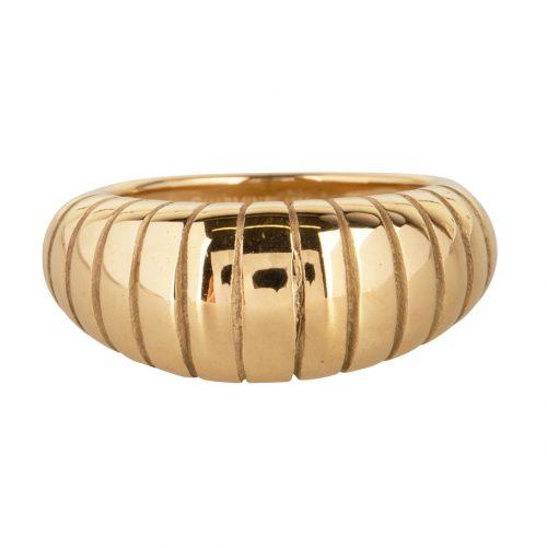 ring strepen schelp groot van staal goud
